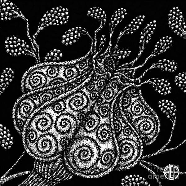 Drawing - Alien Bloom 25 Black And White by Amy E Fraser
