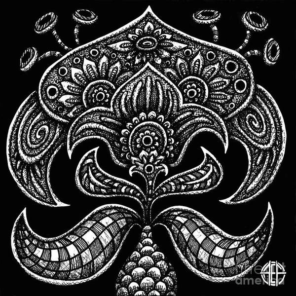 Drawing - Alien Bloom 26 Black And White by Amy E Fraser