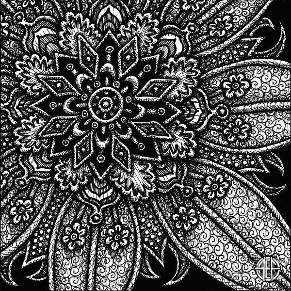 Drawing - Alien Bloom 27 Black And White by Amy E Fraser