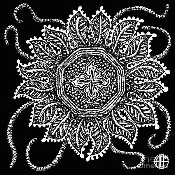 Drawing - Alien Bloom 30 Black And White by Amy E Fraser