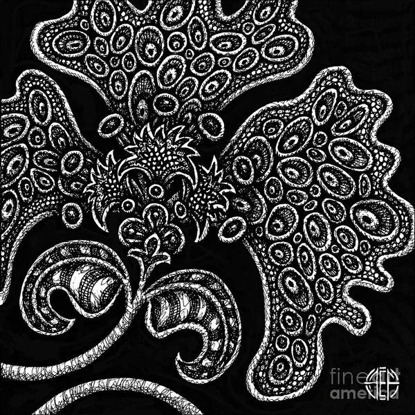 Drawing - Alien Bloom 6 Black And White by Amy E Fraser
