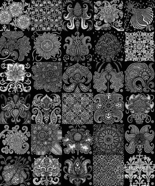 Drawing - Alien Bloom Patchwork Black by Amy E Fraser