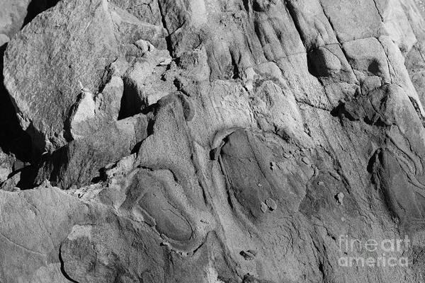 Photograph - Alien Rock by Jeni Gray