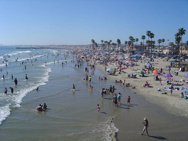 Surf City Usa Photograph - All Busy Beach by Pastorscott