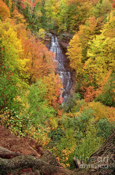 Photograph - All Color Chapel Falls Upper Peninsula Michigan by Dave Welling
