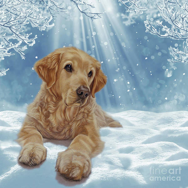 Golden Retriever Mixed Media - All I Want For Christmas by Donna Mulley