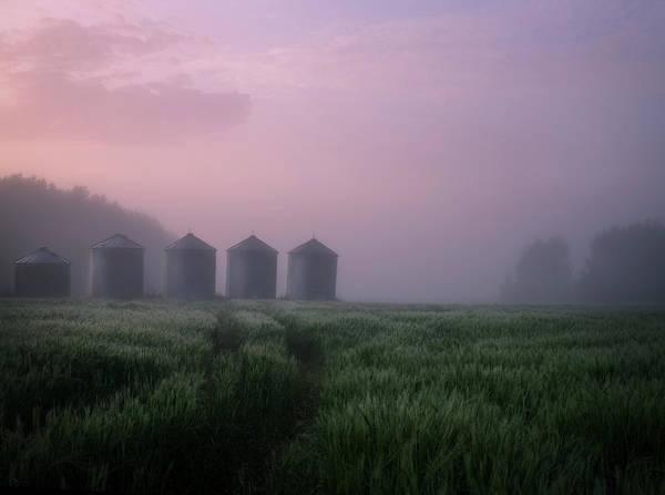 Photograph - All In A Row by Dan Jurak
