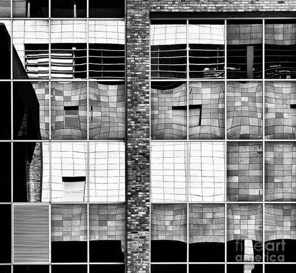 Photograph - All Things Reflective by Tim Gainey