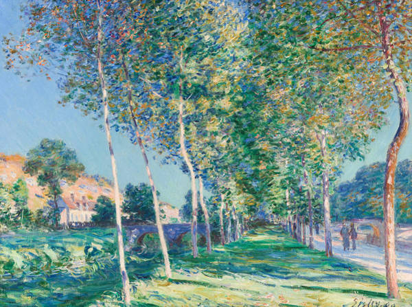 Wall Art - Painting - Allee De Peupliers Aux Environs De Moret-sur-loing by Alfred Sisley