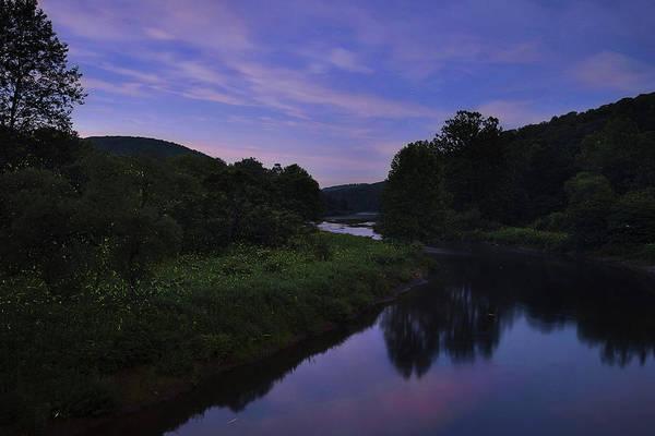 Photograph - Allegheny Fireflies by Matt Shiffler