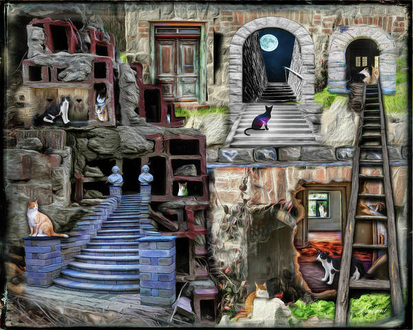 Photograph - Alley Cat Village by Diana Haronis