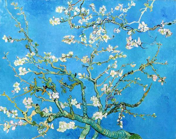 Almond Painting - Almond Blossom - Digital Remastered Edition by Vincent van Gogh