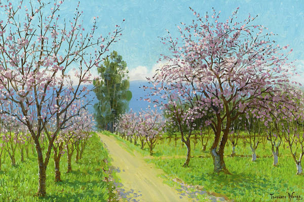 Silicon Valley Wall Art - Painting - Almond Blossoms, Los Altos by Theodore Wores