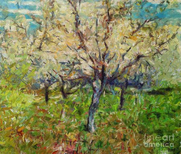 Wall Art - Painting - Almond Orchard by Dragica Micki Fortuna