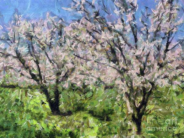 Wall Art - Painting - Almond Orchard In Full Bloom by Dragica Micki Fortuna