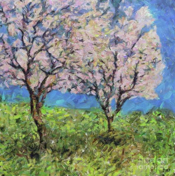 Wall Art - Painting - Almonds In Full Bloom by Dragica Micki Fortuna