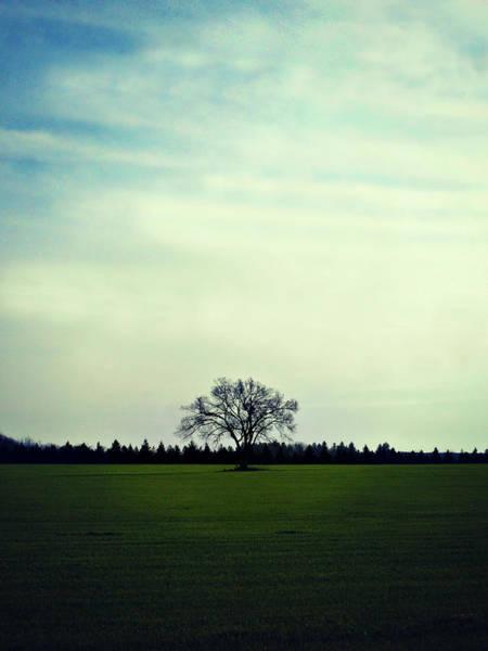 Photograph - Alone At Last by Cyryn Fyrcyd