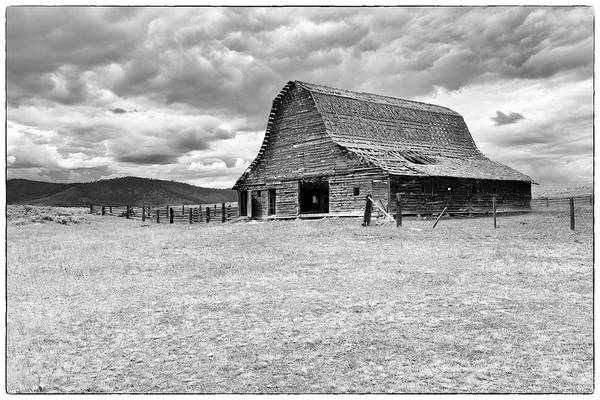 Photograph - Alone On The Prairie by ProPeak Photography