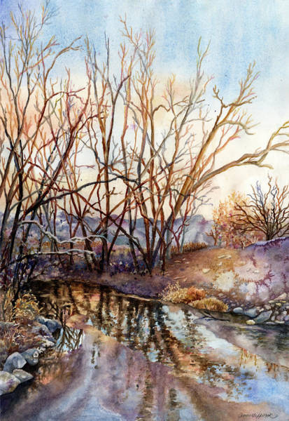 Wall Art - Painting - Along Boulder Creek by Anne Gifford