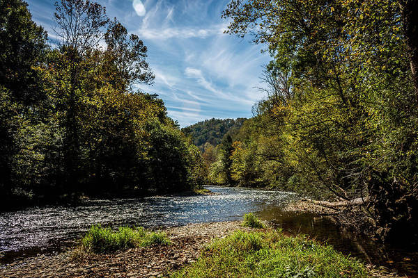 Photograph - Along Oconaluftee River Trail by Susie Weaver
