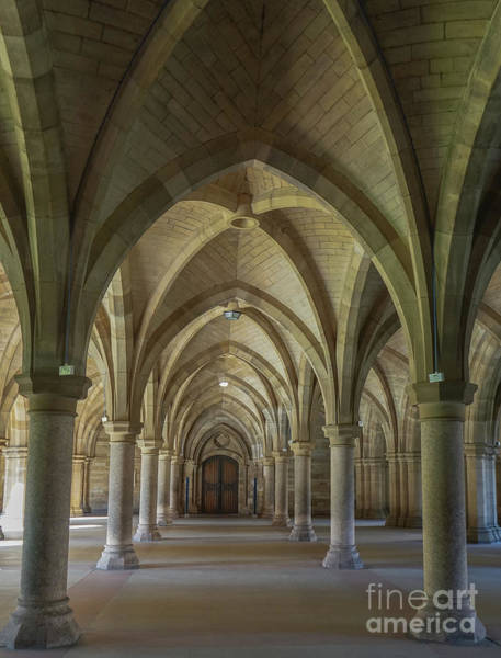 Photograph - Along The Cloisters by Amy Lyon Smith