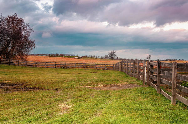 Photograph - Along The Fence by Dan Urban