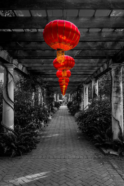 Along The Red Path Art Print by Christine Buckley