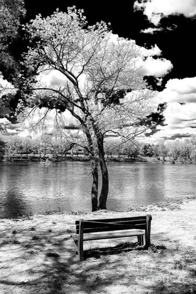Park Bench Photograph - Along The River At Washington Crossing In New Jersey by John Rizzuto