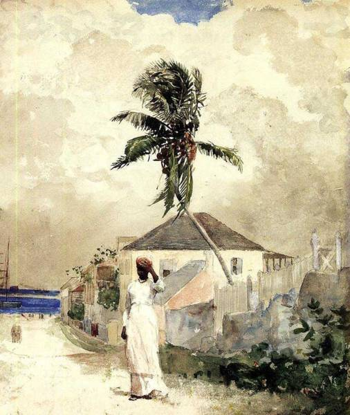 Wall Art - Painting - Along The Road, Bahamas Winslow Homer by Celestial Images