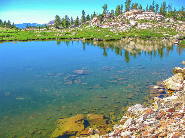 Photograph - Alpine Lake Beartooth Highway by Benny Marty