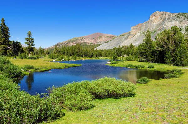 Wall Art - Photograph - Alpine Tarn In Dana Meadows Under Mount by Russ Bishop