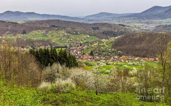 Photograph - Alsace Countryside by Bernd Laeschke