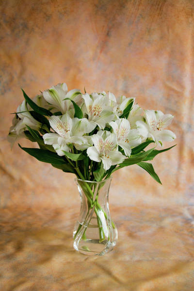 Photograph - Alstroemeria Bouquet On Canvas by Jennifer Wick