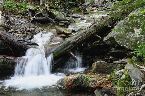 Photograph - Alum Cave Creek 3 by Phil Perkins
