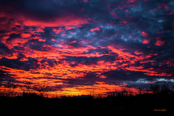 Photograph - Amarillo By Morning by Karen Slagle