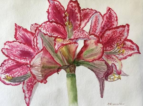 Amaryllis Painting - Amaryllis Unfurled by Ruth Greenlaw