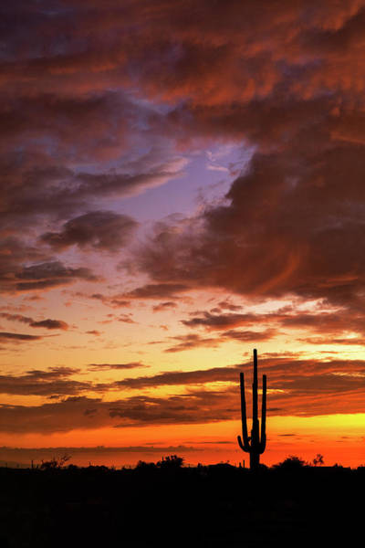 Wall Art - Photograph - Amazing Arizona Skies  by Saija Lehtonen