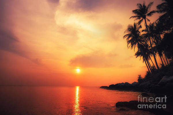 Beautiful Landscape Wall Art - Photograph - Amazing Colors Of Tropical Sunset by Perfect Lazybones