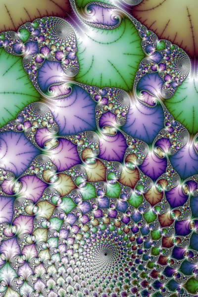 Photograph - Amazing Fractal Art Floral Spiral by Matthias Hauser
