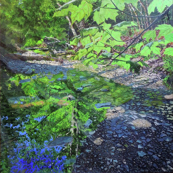 Painting - Amberley Creek 3 by Thomas Stead
