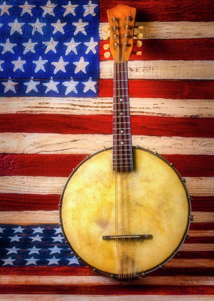Wall Art - Photograph - American Banjo Folk Art Flag by Garry Gay