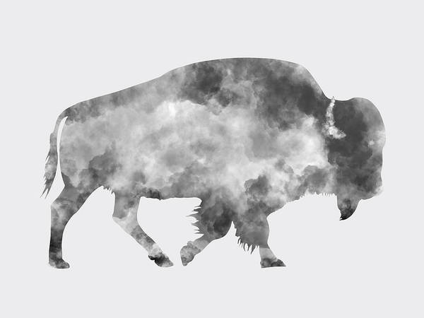 Wall Art - Photograph - American Bison by Mark Rogan
