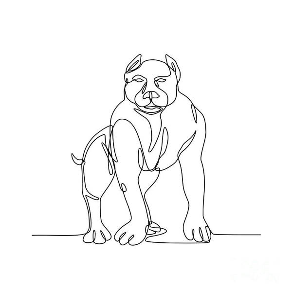 Wall Art - Digital Art - American Bully Continuous Line by Aloysius Patrimonio