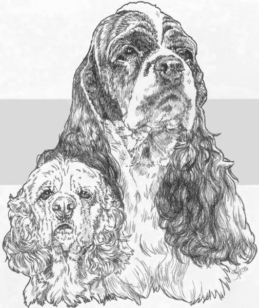 Drawing - American Cocker Spaniel And Pup by Barbara Keith