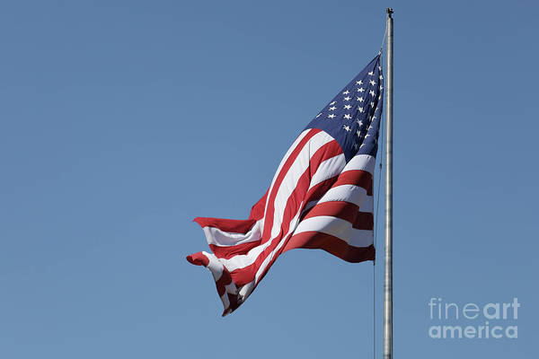 Wall Art - Photograph - American Flag Waving by Edward Fielding
