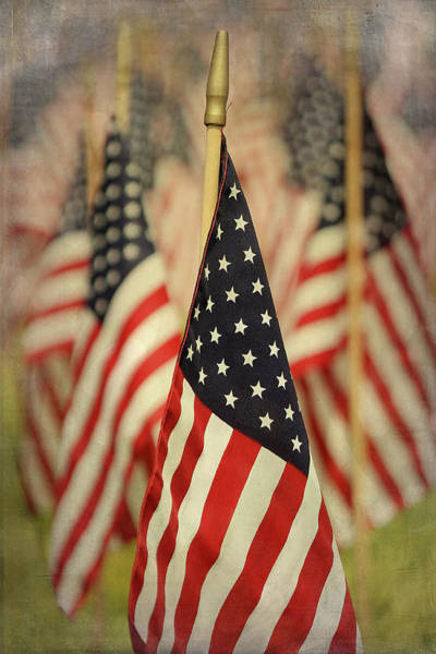Usa Flag Photograph - American Flags by Cgander Photography