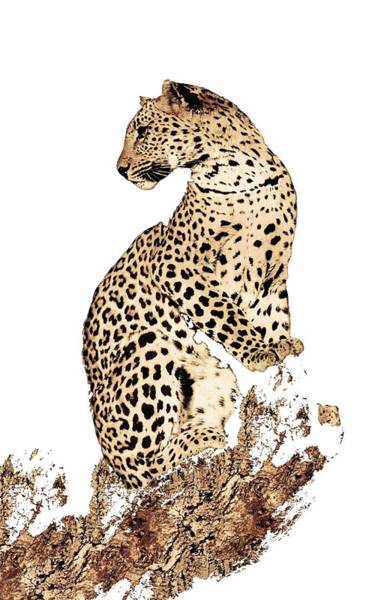 Jaguar Painting - American Leopard by ArtMarketJapan