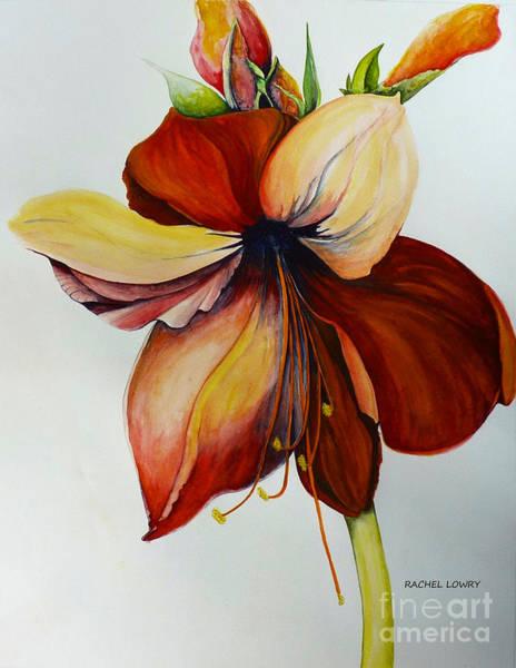 Painting - Amerylis/amaryllis  by Rachel Lowry