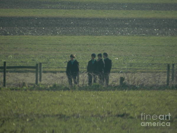 Photograph - Amish Boys Gather In A Field by Christine Clark