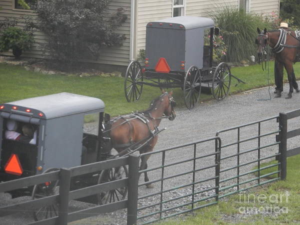 Photograph - Amish Buggies At Church by Christine Clark